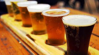 Subir impuestos destruiría 1.700 empleos en el sector cervecero