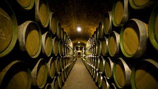 El precio de visitar una bodega en España ronda los 7 euros
