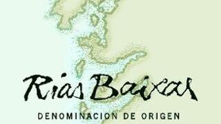 Los litros de vino calificados por la D.O. Rías Baixas crecen el 8%