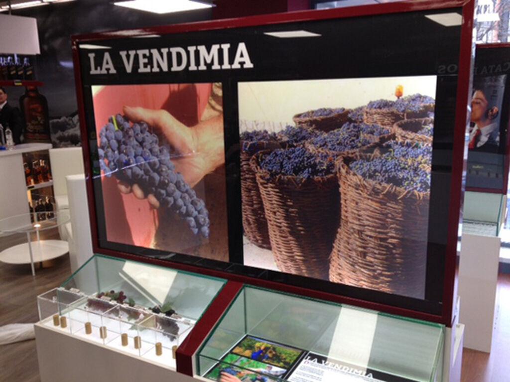 Exposición informativa en la planta superior, muy dedicada al vino