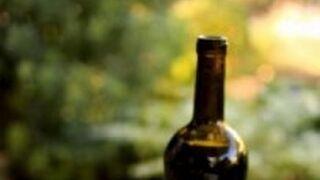 España multiplica por 264 la importación de vino chileno
