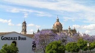 González Byasssupera la barrera de los 300 millones de facturación