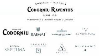 Grupo Codorníu comenzará próximamente a distribuir tequila