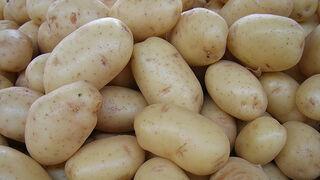 El consumo de patata en España creció el 2,8% en 2012