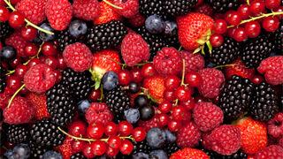 Simposio pionero sobre las berries en Fruit Attraction