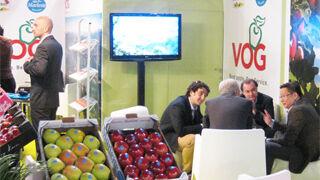 Manzanas del VOG augura un buen comienzo de la próxima campaña