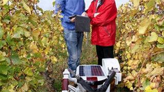 Un robot transformará la industria del vino en 2016
