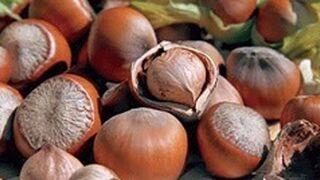 Ferrero crece en el sector de avellanas vía compra en Turquía