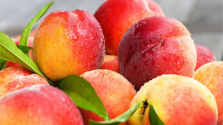 Melocotones y nectarinas retirados del mercado se convertirán en zumo
