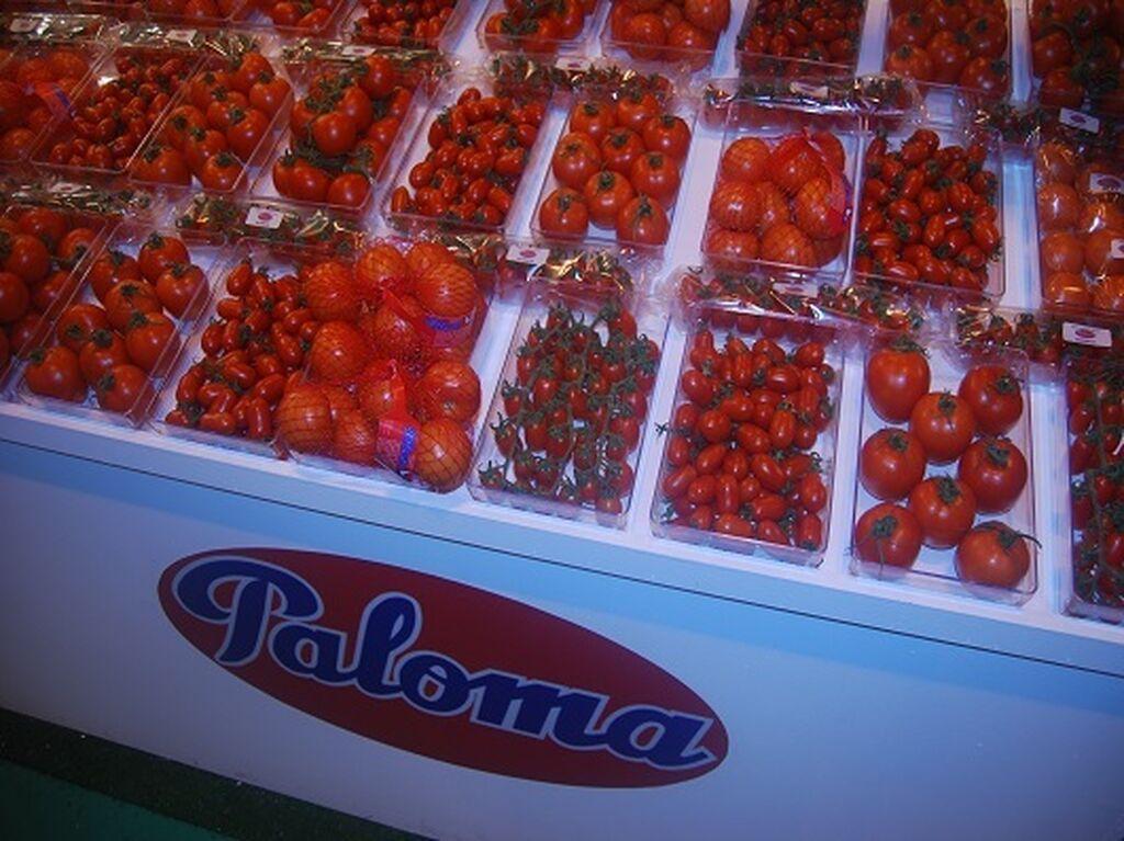 Tomates de todo tipo y en sus múltiples variedades