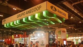 Anecoop facturó 546 millones de euros en su campaña 2013-14