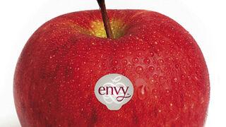 Enza prevé vender 100.000 toneladas de manzana Envy en 2020