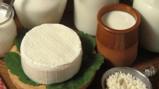 Grupo Lácteo SerryCamp ampliará su oferta con quesos y postres
