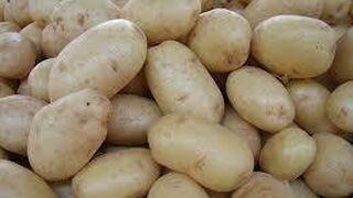 El comercio de hortalizas en Europa cayó el 5%