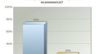 El 75% de los encuestados cree que el sector es reticente al ecommerce