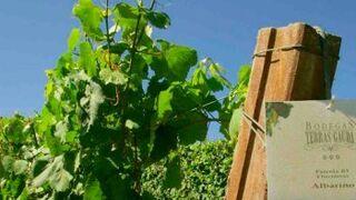 Terras Gauda participa en un proyecto de viticultura de precisión