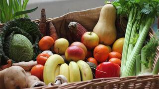 La exportación de frutas y hortalizas creció el 14% hasta octubre