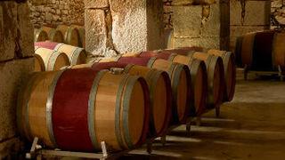 Polémica en el seno de la Denominación de Origen Rioja