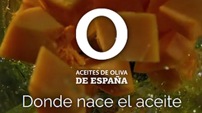 El aceite de oliva español ya tiene su propia página web