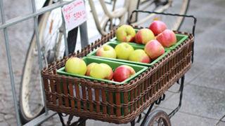 ¿Qué modelo de supermercado implantarías en España?