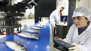 La industria alimentaria ya puede evaluar su grado de sostenibilidad