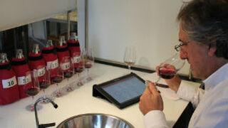 La cosecha 2015 de la D.O. Rioja recibe la calificación de 'Muy Buena'
