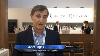 """Codorníu: """"Los vinos para el público joven son tendencia"""""""