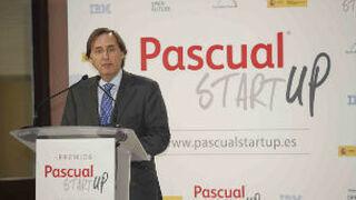 Más de 250 proyectos compiten a los premios Pascual Startup