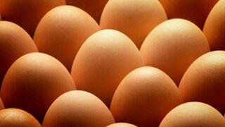 El interproveedor de huevos de Mercadona crece el 2,5%