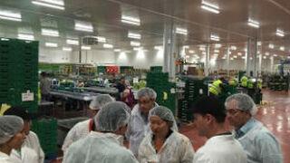 La exportación de fruta de hueso a China está en marcha
