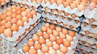 Incautados en Sevilla 80.000 huevos no aptos para el consumo