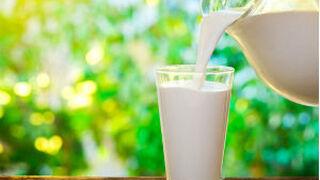 Los precios de la leche entera difieren hasta un 85%, según Facua