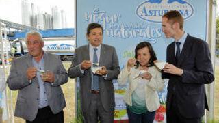 Central Lechera Asturiana remodela su fábrica de yogures