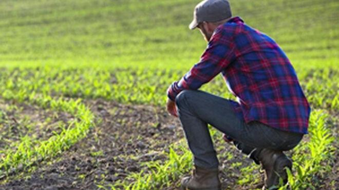 Monsanto, condenada: uno de sus herbicidas provoca cáncer