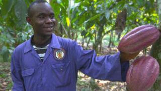 El turrón Suchard se elaborará con cacao sostenible