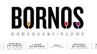 Bornos dará nombre al grupo Taninia Bodegas & Viñedos
