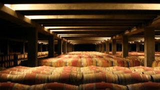 """Pernod Ricard destaca la """"gran calidad"""" de la vendimia 2016"""