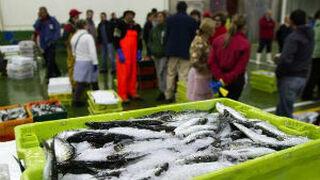 Hacienda registra 21 lonjas de pescado de cinco comunidades