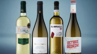 Vicente Gandía presenta sus vinos jóvenes de la añada 2016