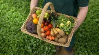 """UPA denuncia que alguien """"se está forrando"""" con las hortalizas"""