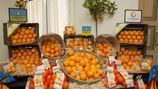 Carrefour España declara su amor a las naranjas valencianas