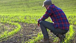 ¿Qué reto debe ser prioritario en el sector agroalimentario español?