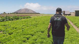 Florette destina a Canarias su mayor inversión de este 2017