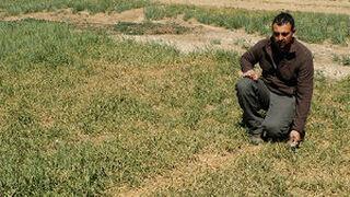 """UPA pide al Parlamento una partida """"de urgencia"""" ante la sequía"""