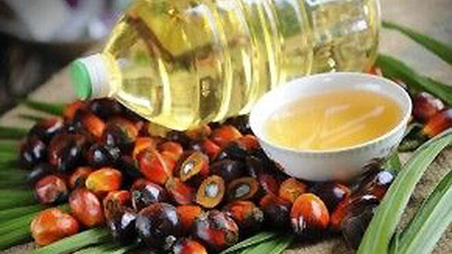 España y el aceite de palma: la guerra está declarada