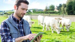 Mercatrace, la startup que permite conocer el recorrido de los alimentos