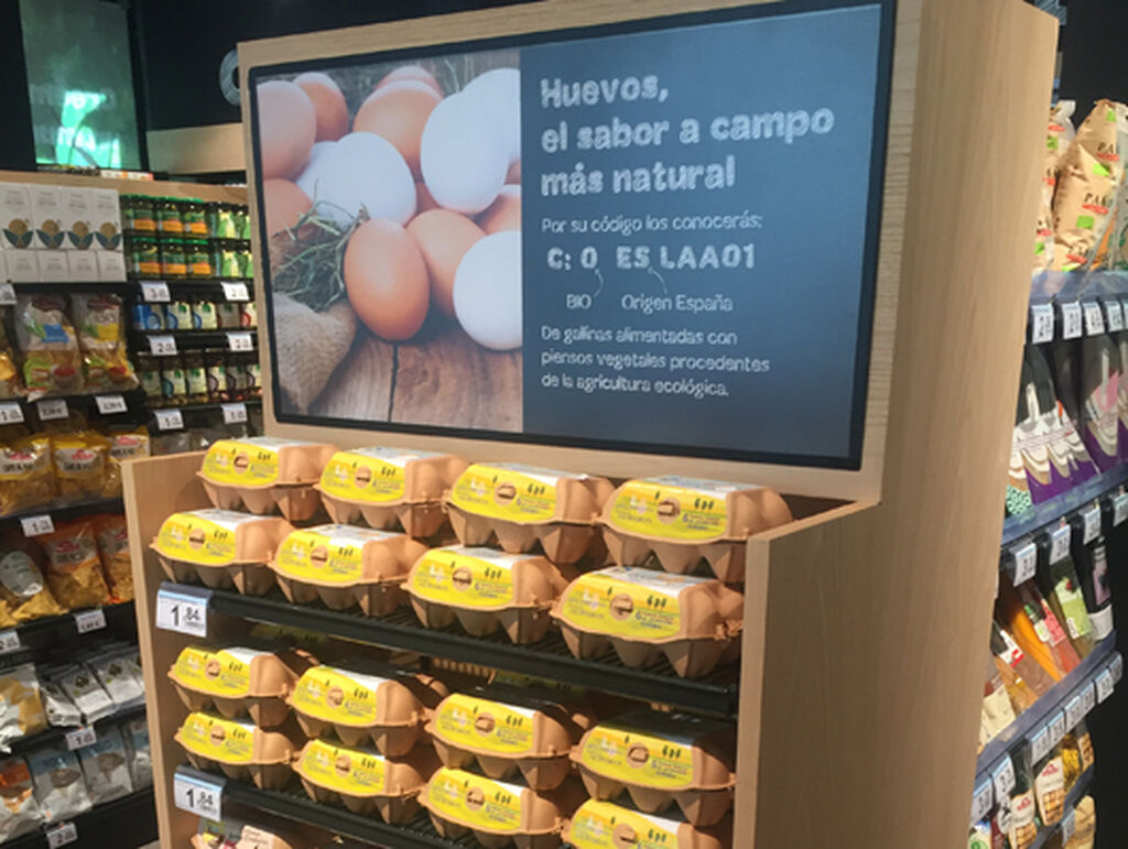 Huevos camperos, una tendencia al alza entre los consumidores