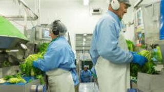 Florette invierte 5 millones en la mejora de sus instalaciones