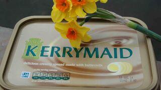 Kerrymaid no podrá usar la marca en España