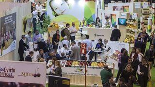 El sector de la  fruta de hueso prepara un nuevo congreso